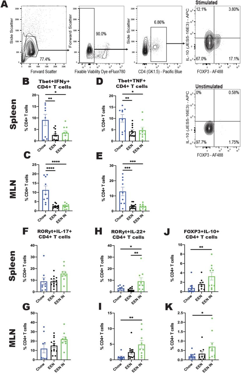 ( A ) Representative gating strategy for the enumeration of Foxp3 + IL-10 + CD4 + T cells. Proportions of Tbet + IFNγ + ([ B ] spleen and [ C ] MLN), Tbet + TNF + ([ D ] spleen and [ E ] MLN), Rorγt + IL-17A + ([ F ] spleen and [ G ] MLN), Rorγt + IL-22 + ([ H ] spleen and [ I ] MLN) and Foxp3 + IL-10 + ([ J ] spleen and [ K ] MLN) CD4 + T cells in mice from the chow, EEN and EEN-IN groups (n = 8 to 13 mice per group; each data point represents one mouse). * p