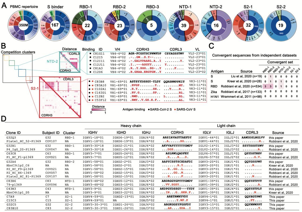 Antibody sequence analyses. (A) Heavy-chain variable-domain genes of the 167 mAbs characterized by binding SARS-CoV-2 spike in either ELISA or cell-surface expression format. The inner ring of each pie chart shows the VH family and the outer ring, the gene. PBMC repertoire is from 350 million reads of deep sequencing ( 37 ). S binders include 167 clones in Table S2. *P