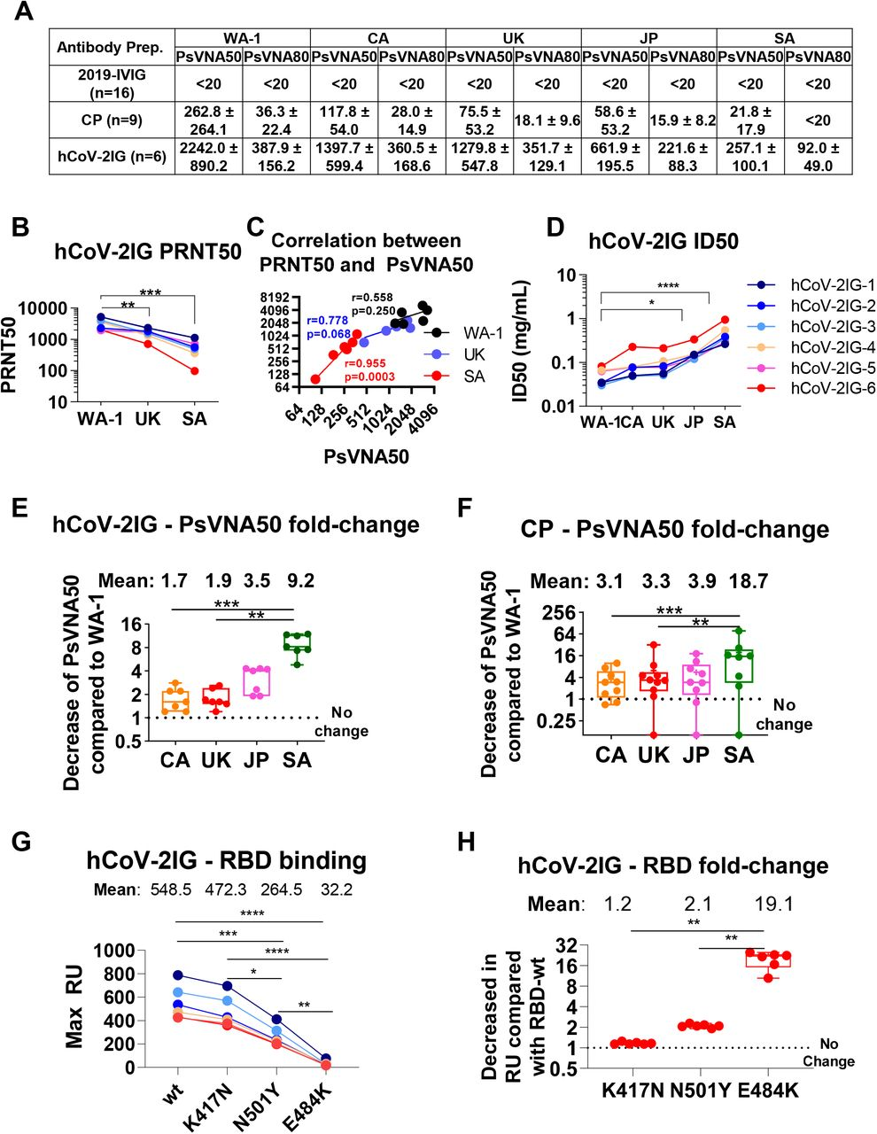Neutralizing antibody titers and RBD binding antibodies of convalescent plasma and hCoV-2IG against various SARS-CoV-2 strains. (A) SARS-CoV-2 neutralizing antibody titers in CP, 2019-IVIG and hCoV-2IG preparations as determined by pseudovirus neutralization assay in 293-ACE2-TMPRSS2 cells with SARS-CoV-2 WA-1 strain, CA variant (B.1.429), UK variant (B.1.1.7), JP variant (P.1) or SA variant (B.1.351). PsVNA50 (50% neutralization titer) and PsVNA80 (80% neutralization titer) titers for control pre-pandemic 2019-IVIG (n=16), convalescent plasma (n =9) and hCoV-2IG (n = 6) were calculated with GraphPad prism version 8. Data show mean values + SEM for PsVNA50 and PsVNA80 titers for each of the 3 antibody groups against the SARS-CoV-2 WA-1, CA, UK, JP and SA variants. (B) End-point virus neutralization titers for six hCoV-2IG lots using wild type authentic SARS-CoV-2 WA-1, UK and SA virus strains in a classical BSL3 neutralization assay based on a plaque assay was performed as described in Materials and Methods. (C) Pearson two-tailed correlations are reported for the calculation of correlation of PRNT50 titers against wild-type SARS-CoV-2 strains (WA-1, UK or SA) and PsVNA50 titers against corresponding pseudovirions expressing either WA-1, UK or SA spike in pseudovirion neutralization assays for the six hCOV-2IG lots. (D) Antibody concentration (in mg/mL) required for each of the six hCoV-2IG batches to achieve 50% neutralization of SARS-CoV-2 WA-1, CA, UK, JP or SA variants in PsVNA. (E-F) Fold-decrease in PsVNA50 neutralization titers against emerging variant strain CA (B.1.429), UK (B.1.1.7), JP (P.1) and SA (B.1.351) for six hCoV-2IG lots (E) and nine CP lots (F) in comparison with SARS-CoV-2 WA-1 strain. The numbers above the group shows the mean fold-change for each variant. (G-H) Total antibody binding (Max RU) of 1mg/mL for the six batches of hCoV-2IG (hCoV-2IG-1 to hCoV-2IG-6) to purified WA-1 RBD (RBD-wt) and RBD mutants: RBD-K417N, RBD-N501Y and RBD-E484K b