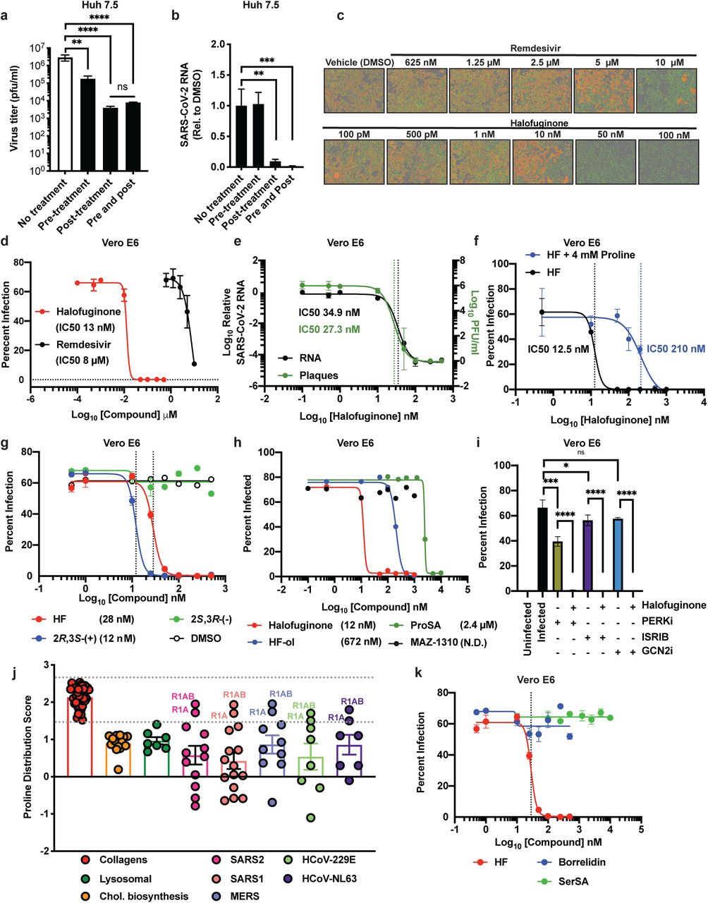 Halofuginone Inhibits infection and replication of authentic SARS-CoV-2. a-b, Authentic SARS-CoV-2 virus infection of Huh7.5 cells treated with Halofuginone. Huh7.5 cells treated with halofuginone pre- or post-infection, or both pre- and post-infection with authentic SARS-CoV-2 virus. Viral titers ( a ) and quantification of viral RNA ( b ) in the infected cells is shown. c, Immunofluorescent quantification of viral nucleocapsid (red) protein in Vero E6 cells treated with Halofuginone and Remdesivir and infected with authentic SARS-CoV-2 virus (nuclei = green). d, Authentic SARS-CoV-2 virus infection of Vero E6 cells treated with Halofuginone and Remdesivir as measured in flow cytometry. e, Quantification of plaque formation and viral RNA in Vero E6 cells treated with Halofuginone and Remdesivir and infected with authentic SARS-CoV-2 virus. f, Rescue experiment of the effect of halofuginone treatment on SARS-CoV-2 infection using excess proline. g , Treatment of Vero E6 cells with halofuginone and enantiomers and their effect on SARS-CoV-2 infection. h, Treatment of Vero E6 cells with modulators of the PRS pathway and their effect on SARS-CoV-2 infection. i, Treatment of Vero E6 cells with modulators of the ISR pathway and their effect on SARS-CoV-2 infection. j, The distribution of proline distribution and density depicted as a proline distribution score for collagens, cholesterol biosynthetic proteins, lysosomal proteins and viral SARS-CoV-2 (SARS2), SARS-CoV-1 (SARS1), MERS-CoV (MERS), HCoV-229E and HCoV-LN63 proteins( ## p ≤ 0.01 collagen s vs. all other protein classes). k, Treatment of Vero E6 cells with AARS inhibitors and their effect on SARS-CoV-2 infection. Data shown as mean ± S.D. Statistics performed by 1-way ANOVA and uncorrected Fisher's LSD test (ns: p > 0.05, *: p ≤ 0.05, **: p ≤ 0.01, ***: p ≤ 0.001, ****: p ≤ 0.0001, ## : p ≤ 0.01.