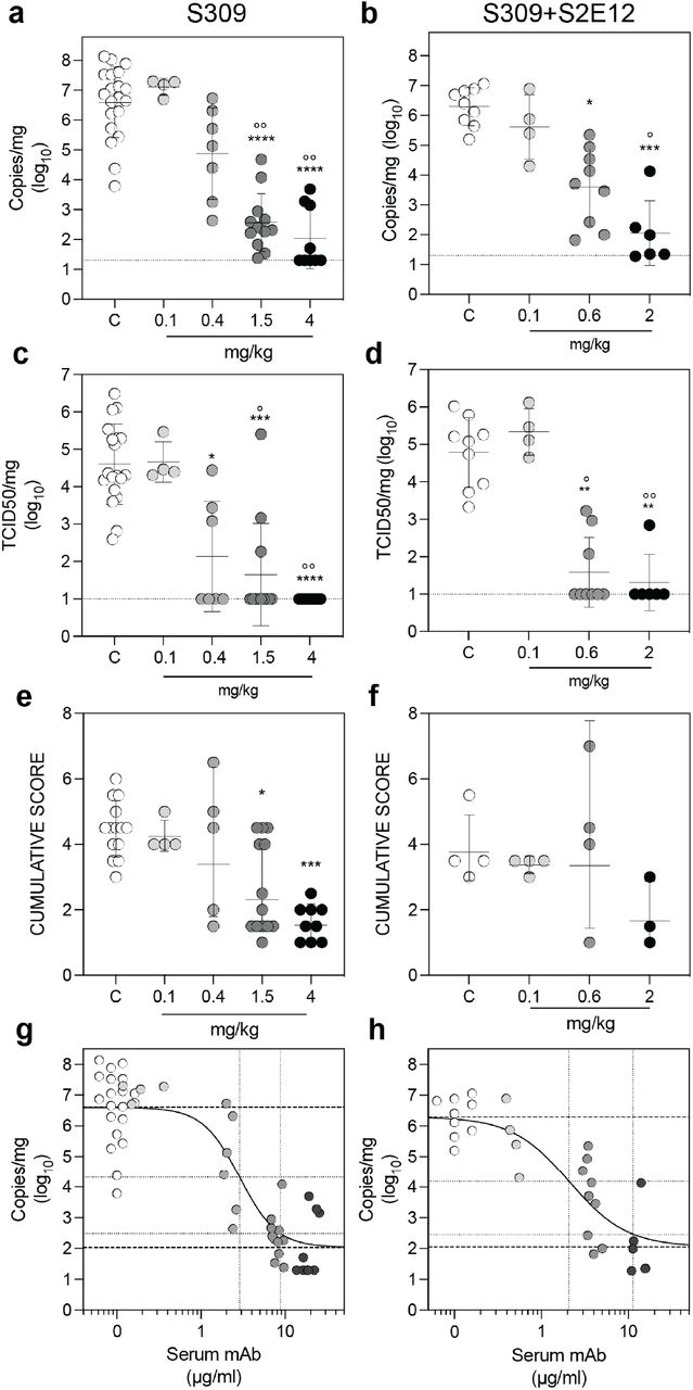Role of host effector function in SARS-CoV-2 challenge. Syrian hamsters were injected with the indicated amount (mg/kg) of hamster IgG2a S309 either wt or Fc silenced (S309-N297A). a , Quantification of viral RNA in the lung 4 days post infection. b, Quantification of replicating virus in the lung 4 days post infection. c, Histopathological score in the lung 4 days post infection. Control animals (white symbols) were injected with 4 mg/kg unrelated control isotype mAb. *, **, ***, **** p