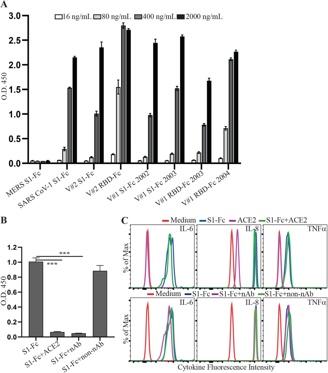 SARS CoV-2 spike protein-induced cytokine production is independent of its binding to ACE2. ( A ) The binding activities of coronaviral spike Fc fusion proteins to ACE2 were measured using an ELISA. The binding activities of 16, 80, 400 and 2000 ng/mL of the indicated proteins were presented as absorbance at 450 nm (O.D. 450). ( B ) Inhibition of S1-Fc binding to ACE2 by soluble ACE2 or a neutralizing anti-S1 antibody. 400 ng/mL of S1-Fc was preincubated with or without 2 μg/mL of soluble ACE2, 1 μg/mL of neutralizing (nAb) or non-neutralizing (non-nAb) anti-S1 antibody before incubation with plate-bound ACE2. Statistical analyses were performed using a two-tailed, Student's T-test. *** depicts p